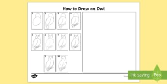 How to Draw an Owl - - draw, owl, how to, art, birds of prey,