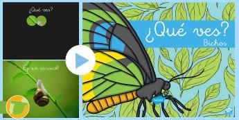 Presentación: ¿Qué ves? - Bichos - libélula, abeja, caracol, hormiga, típula, escarabajo, mariposa, oruga, gusano, mariquita, cochini