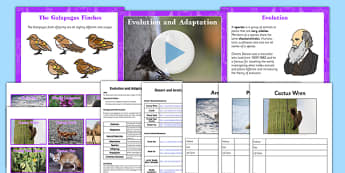 Evolution and Adaptation Year 6 Task Setter PowerPoint - adaptation, evolution, task setter, powerpoint, task setter powerpoint, year 6, year six