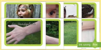 Körperteile Fotos für die Klassenraumgestaltung - Unser Körper, Körper, Körper Fotos, Körper Darstellung,German.