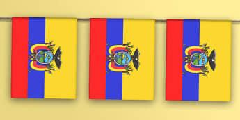 Ecuador Flag Bunting - flag, world, country, countries, South America, display, Olympics, Rio, 2016, celebrate, event