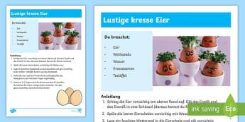 Lustige Kresse Eier Anleitung für Lehrkräfte-German - Frühling, Ostern, Ei, Kresse, pflanzen, spring, Easter, egg, cress, to grow,German