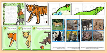 EYFS Jungle Discovery Sack - EYFS, jungle, animals, discovery