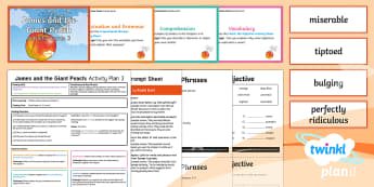 Y4 James and the Giant Peach: Activity Plan 3 PlanIt Guided Reading Pack - James and the Giant Peach, roald dahl, insects, carousel, year 4, y4, ks2, guided reading, reading,