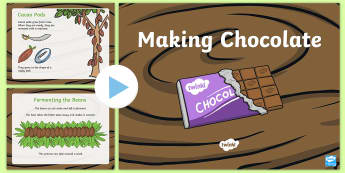 Making Chocolate PowerPoint - CfE Fairtrade, chocolate, cacao, cocoa, pod, willy wonka, chocolate factory, food origins, ,Scottish