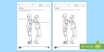Puberty Homework Activity Sheet - Homework, puberty, change, development, life cycle, human, growth, adolescence, growing up