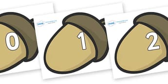 Numbers 0-31 on Brown Acorns - 0-31, foundation stage numeracy, Number recognition, Number flashcards, counting, number frieze, Display numbers, number posters