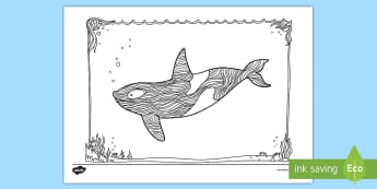 Orca Mindfulness Colouring Page - New Zealand Mindfulness, orca, killer whale, black and white whale, blackfish, colouring, colouring