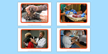 Vet Display Photos - Vet, Veterinary Nurse, Receptionist, Veterinary Surgery, examination, medicine, injection, dog, animals