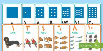 باقة ملصقات أعداد للعرض - أعداد، الأعداد، حساب، رياضيات، عربي، ملصقات، أرقام، ع