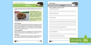 Arici -  Fișe diferențiate de evaluare a competenței de lectură