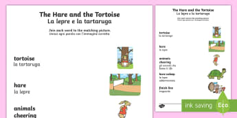 The Tortoise and The Hare Word and Picture Matching Activity Sheet English/Italian - The Tortoise and The Hare Word and Picture Match - stories, match, storeys, mathching, activity shee