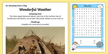 Wonderful Weather Activity Sheet, worksheet