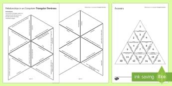 Relationships in an Ecosystem Triangular Dominoes - Tarsia, Triangular Dominoes, Ecosystem, Food Chain, Producer, Predator, Prey, Consumer, Habitat, Pop