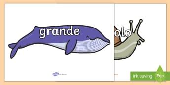 Vocaboli delle misure su chiocciole e balene - vocaboli, misure, grande, piccolo, grandezza, italiano, italian, materiale, scolastico