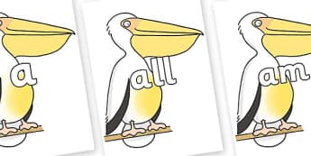 Foundation Stage 2 Keywords on Pelican to Support Teaching on The Great Pet Sale - FS2, CLL, keywords, Communication language and literacy,  Display, Key words, high frequency words, foundation stage literacy, DfES Letters and Sounds, Letters and Sou