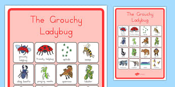 The Grouchy Ladybird Vocabulary Poster - usa, america, the grouchy ladybug, vocabulary, poster