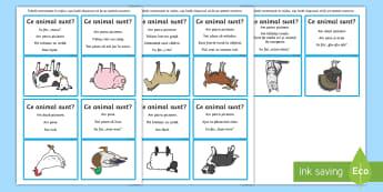 Ghici ce animal sunt - Animale domestice Joc  - t-s-3434-what-am-i-farm-animals-guessing-game  Joc, jocuri, română, materiale,a nimale domenstice,