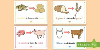 Da Dove Viene il Cibo Poster - da, dove, viene, il, cibo, alimentazione, derivati, lana, carne, uova, italiano, italian