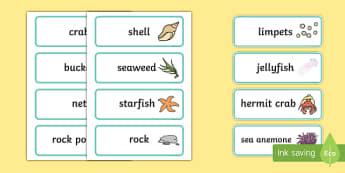 Seaside Rock Pool Word Cards - seaside, rockpool, word cards, cards