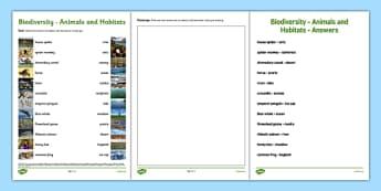 Biodiversity Habitat and Animal Matching Activity Sheet - matching, activity sheet, animals, habitat, species, green schools, biodiversity, drawing, worksheet