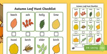Autumn Leaf Hunt Checklist