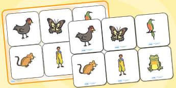 Handa's Hen Matching Cards and Board - handa's hen, handas hen, handas hen picture matching cards, handas hend matching game, handas hen sen activity, sen