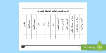 الرسم البياني لمكان الفاصلة العشرية -  ، المرحلة الابتدائية، المعلّم، نشاط، القيمة المكانية
