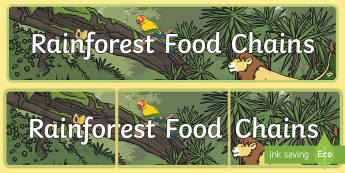 Rainforest Food Chains Display Banner - Food Chains Display Banner - food, chains, chain, eating, rainforest, display, banner, sign, poster,