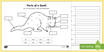 Parts of a Quoll Activity Sheets - spotted quoll, quolls, Australian animals, animal parts, labeling animals, Australian fauna, ACSSU04