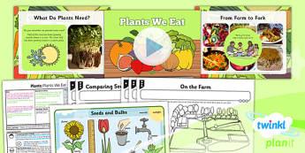 PlanIt - Science Year 2 - Plants Lesson 5: Plants We Eat Lesson Pack