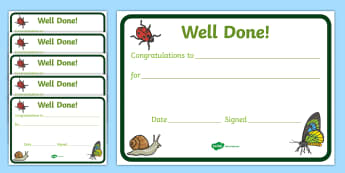 Minibeast Reward Certificate (15mm) - Reward Chart (15mm), reward chart, chart, reward, 15mm, 15 mm, stickers, twinkl stickers, award, certificate, well done, behaviour management, behaviour