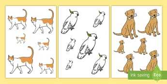 Pets Size Ordering - EYFS, Early Years, Pets, Animals, National Pet Month, cat, dog, rabbit, Maths, shape, size, size ord