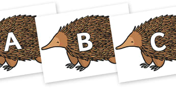 A-Z Alphabet on Echidna - A-Z, A4, display, Alphabet frieze, Display letters, Letter posters, A-Z letters, Alphabet flashcards