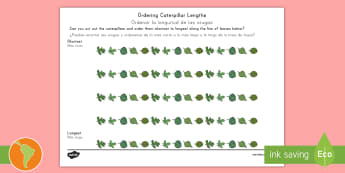 Ordering Caterpillar Lengths Activity Sheet US English/Spanish (Latin) - Ordering Caterpillar Lengths Activity Pack - activity pack, order, lenth, catapillar, catterpillar,