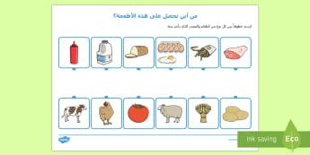ورقة نشاط من أين يأتي الطعام - العطعام، مصادر الطعام، عربي، ورقة عمل، نشاط، علوم,Arabic