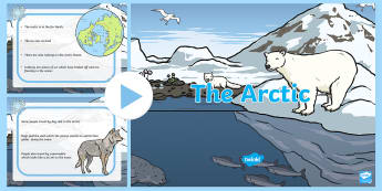 Arctic PowerPoint - arctic, powerpoint, weather, seasons, information powerpoint, class discussion, discussion prompt, discussion, discussion starters