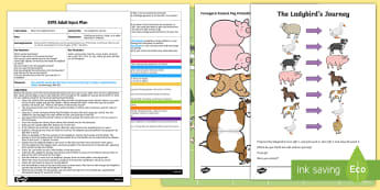EYFS The Ladybird's Journey Adult Input Plan and Resource Pack - EYFS, What the ladybird heard, Julia Donaldson, minibeasts, ladybird, insect, farm, farmyard, animal