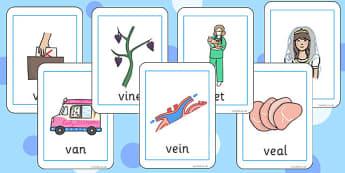 Initial v Sound Playing Cards - initial v, sound, sounds, cards