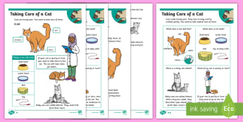 KS1 How To Look After A Cat Differentiated Fact File - Pets, pet, EYFS, KS1, take, care, look, after, family, member, members, vet, vet surgery, surgery, i