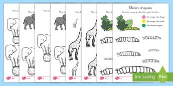 Ficha de actividad: Colorear con tamaños - Animales - medida, colorear, colorea, colores, animales, oruga, jirafa, elefante, clave, tamaño, peso, pesos,