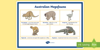 Australian Megafauna Display Poster - mega fauna, Australian animals, extinct animals, extinct Australian animals, megafauna, Australian m