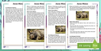 Year 2 Javan Rhinos Differentiated Fact File - Children's Books, Ronald the Rhino, children's book, endangered, animal, critically, extinct,  hab