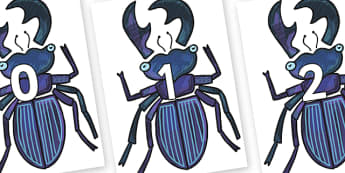 Numbers 0-50 on Stag Beetle to Support Teaching on The Bad Tempered Ladybird - 0-50, foundation stage numeracy, Number recognition, Number flashcards, counting, number frieze, Display numbers, number posters