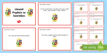 Cardiau Ffeithiau Taith Llewod Prydain ac Iwerddon  - Taith y llewod, lions, rugby, rygbi, chwaraeon, sports, Cymru, Wales, British, Prydain,Welsh