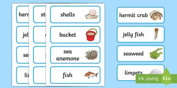 Seaside Rockpool Flashcards - Seaside Rockpool Flashcards -seashore, seasie, saside, wordmat, seaside, rockpool, fish, coral, buck