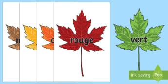 Posters d'affichages : Les couleurs sur des feuilles d'automne - Couleurs, colours, Cycle 1, automne, feuilles, leaves, autumn, art, activités artistiques,French