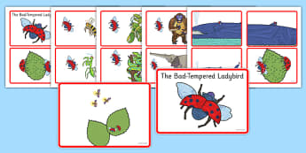 Story Sequencing Cards to Support Teaching on The Bad Tempered Ladybird - story books