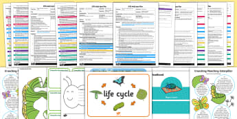 EYFS Adult Input Planning and Resource Pack to Support Teaching on The Crunching Munching Caterpillar - EYFS, Early Years planning, The Crunching Munching Caterpillar, Sheridan Cain, life cycle of a butte