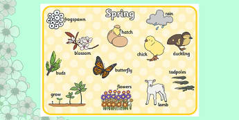 Spring Word Mat - Spring, word mat, writing aid, lambs, daffodils, new life, flowers, buds, plants, growth